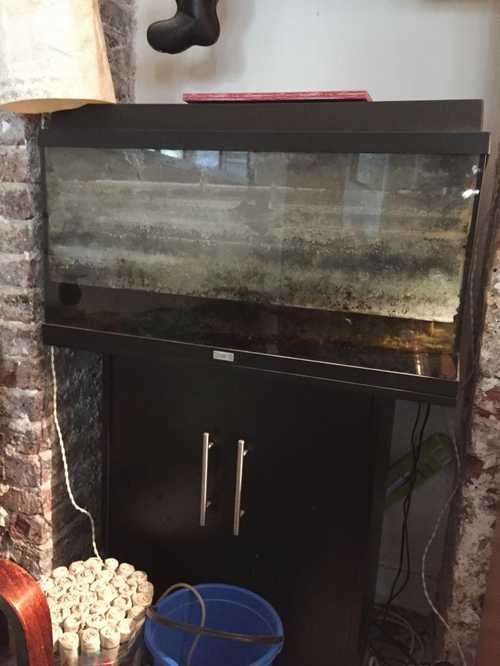 Aquarium 90L + meuble